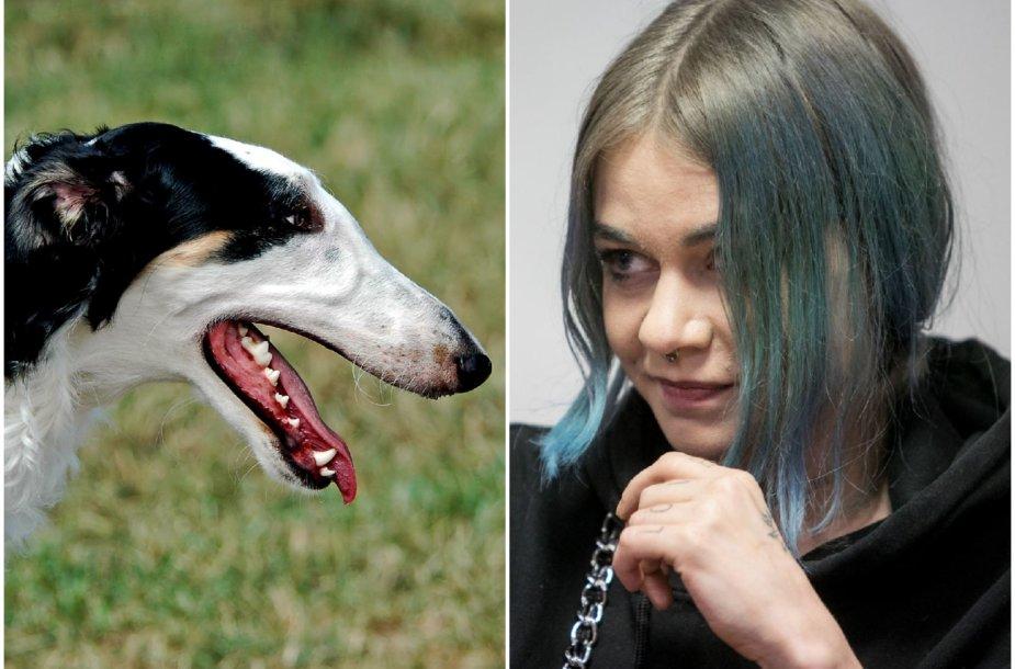 Asociatyvi iliustracija: R.Jankauskaitė nesuvaldė medžioklėse naudojamo, vilkogaudžiu vadinamo šuns.