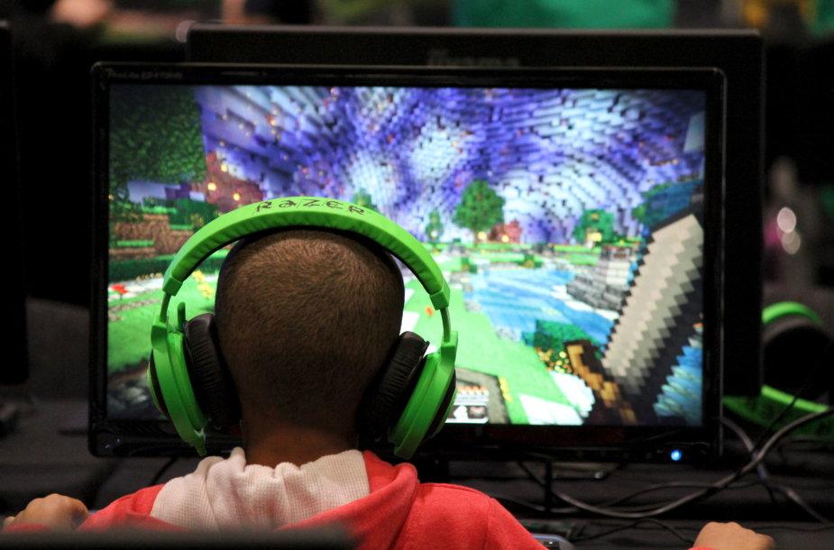 """Vaikas žaidžia """"Minecraft"""""""