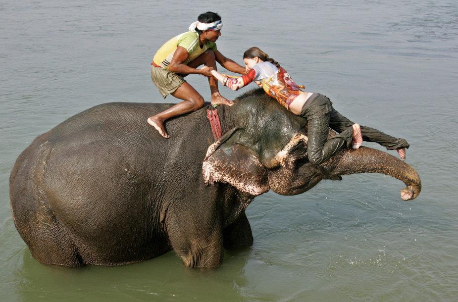 Turistei padedama užlipti ant dramblio
