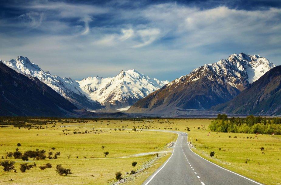 8. Naujoji Zelandija