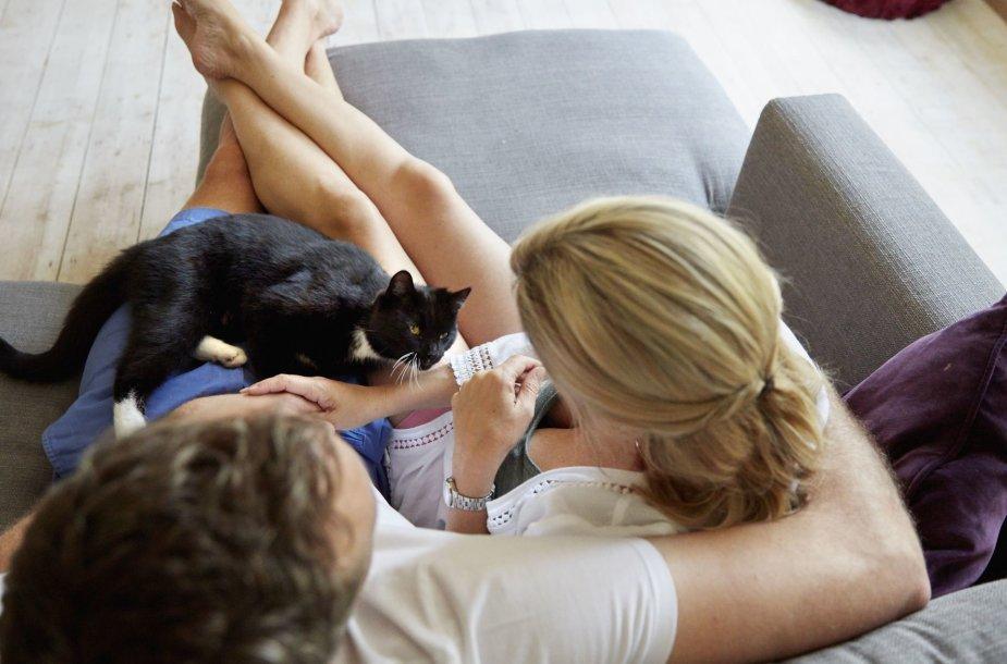 Pora su katinu