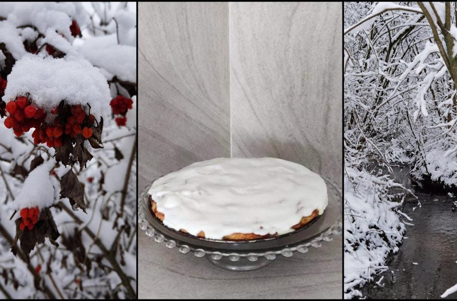 Tikros lietuviškos žiemos įvėptas Sandros obuolių pyragas