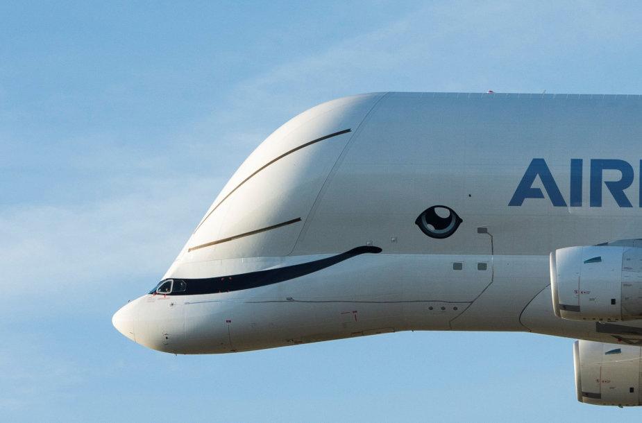 """Krovininis lėktuvas """"Airbus BelugaXL"""""""