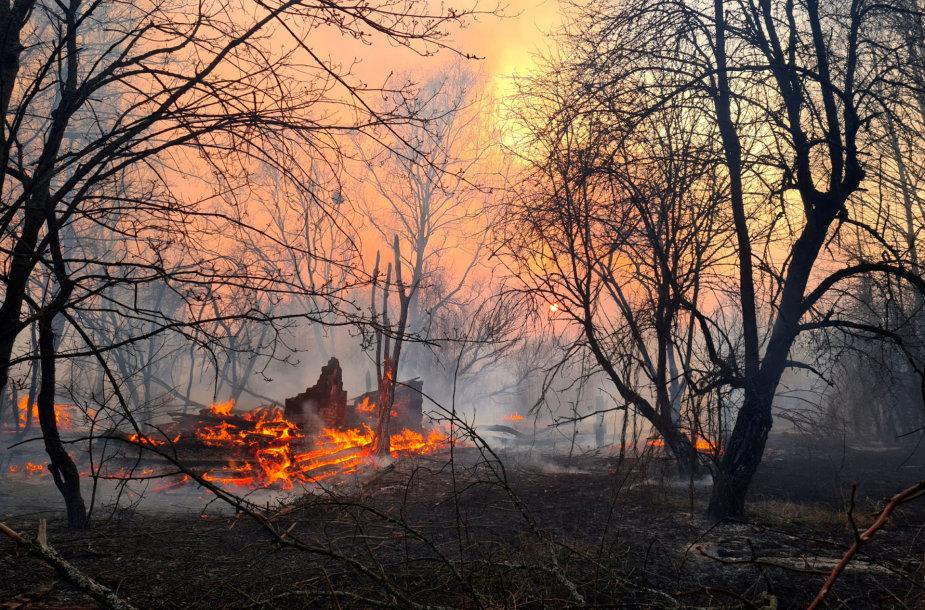 Miško gaisras Černobylio elektrinės zonoje.