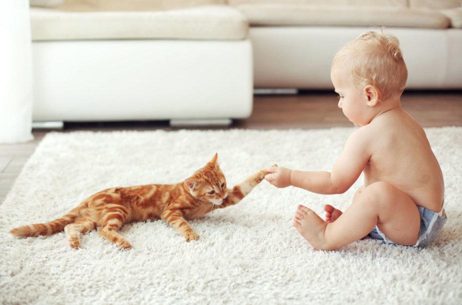 Katė ir kūdikis