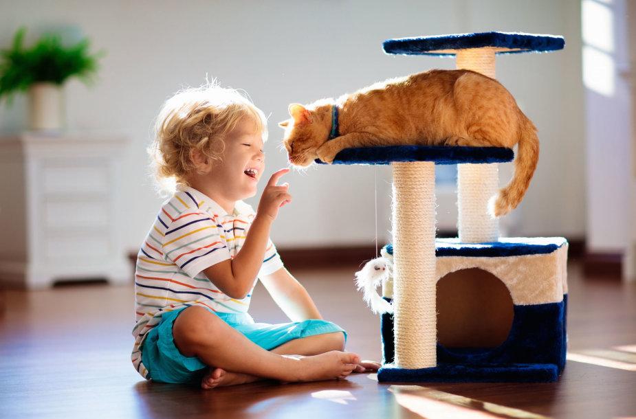Vaikas ir katinas
