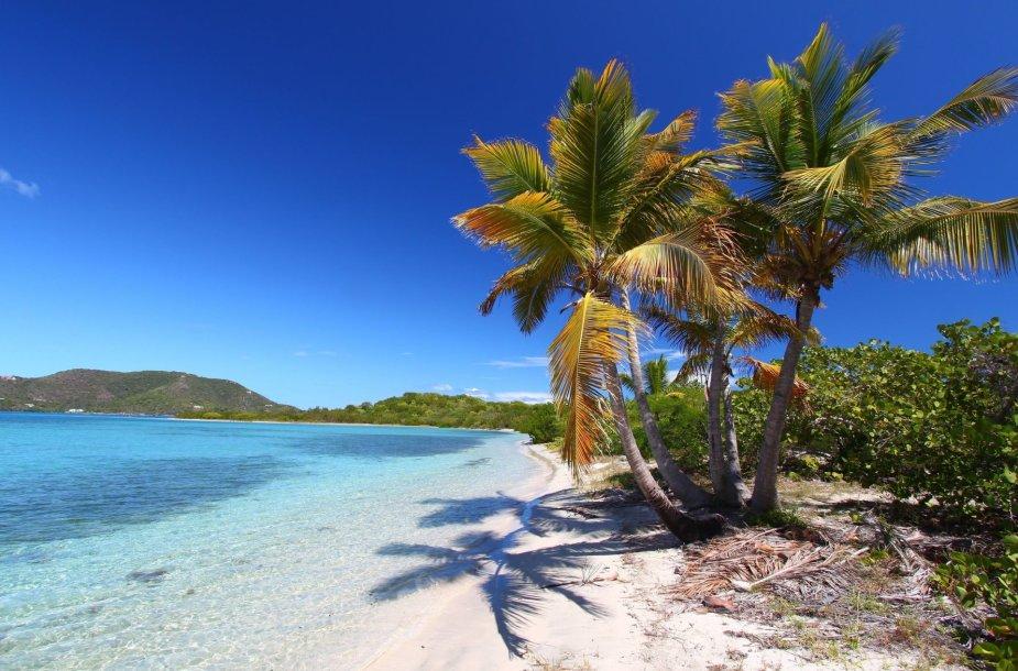 Britų Mergelės salos – ofšorinio verslo rojus