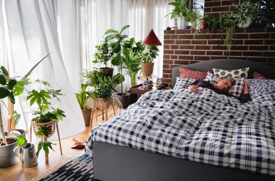 Kokybiškas nakties miegas