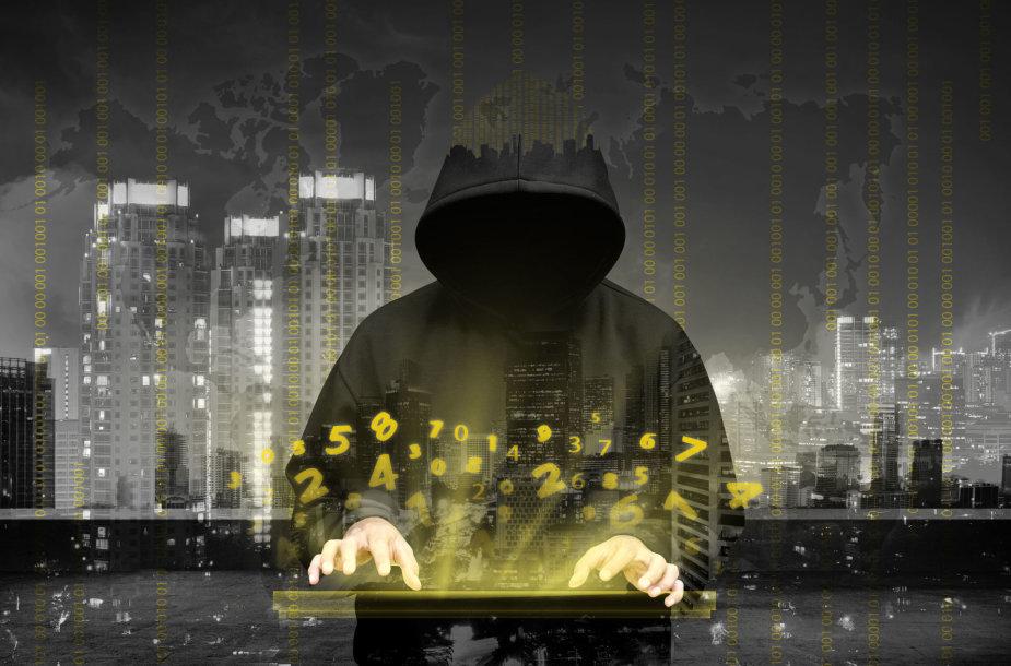 Kibernetinis karas / 123rf.com nuotr.
