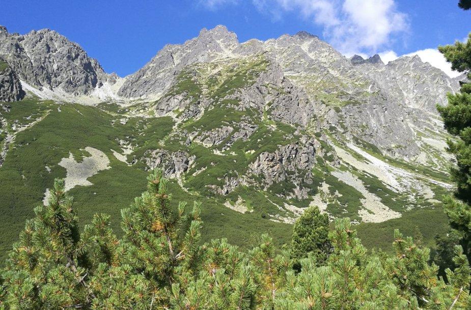 Aukštieji Tatrai iš Slovakijos pusės