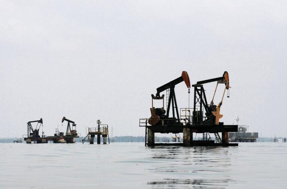 Naftos gavyba Venesueloje