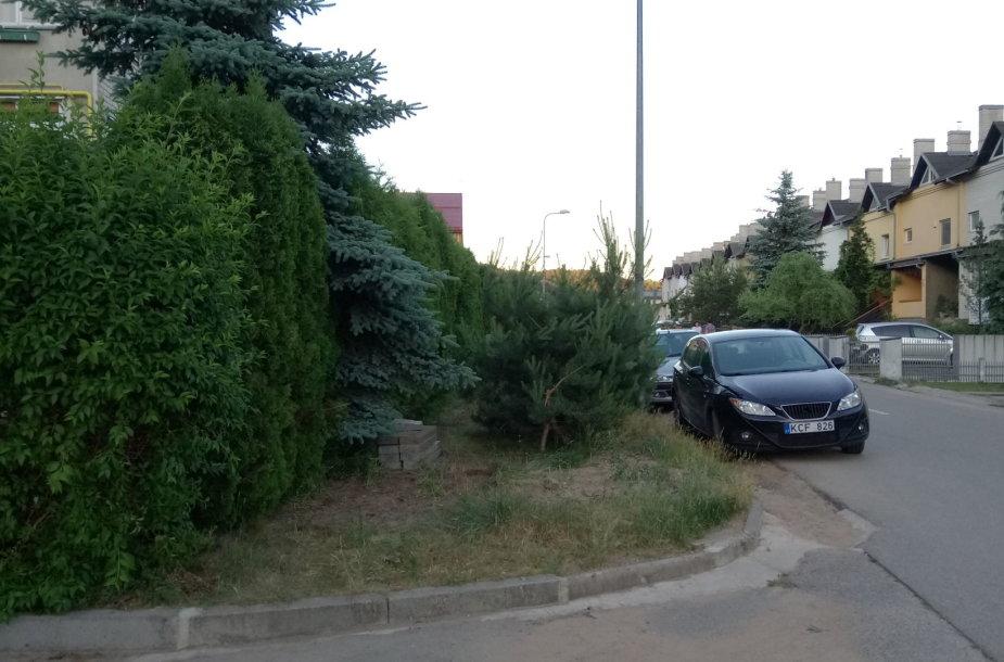 Kaimynų kova dėl valstybinės žemės Kauno Ramybės gatvėje