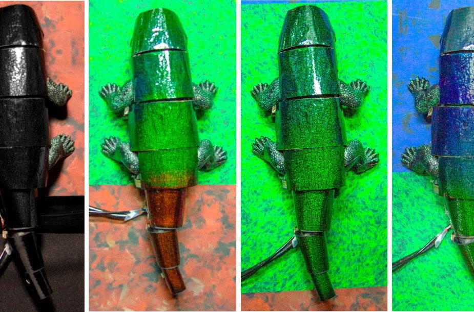 P.Korėjos mokslininkai sukūrė dirbtinę chameleono odą