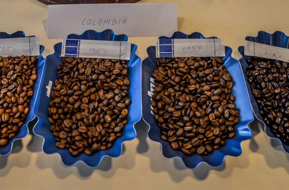 Skirtingo skrudinimo arabikos pupelės iš Kolumbijos.