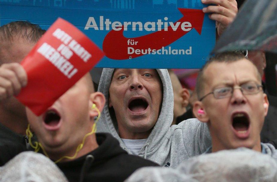 """Partijos """"Alternatyva Vokietijai"""" rėmėjai"""