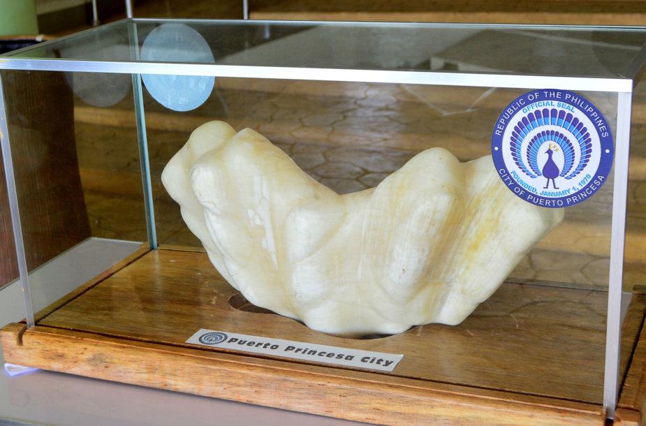 Filipinuose rastas didžiulis perlas