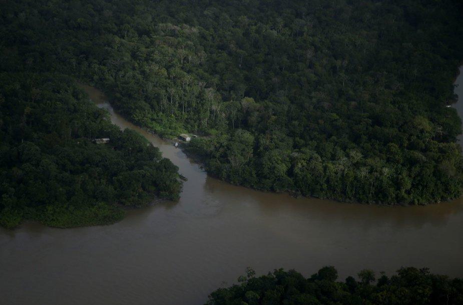 Amazonės žiotyse naftos ieškoti planuojantys brazilai kelia pavojų vietinei bendruomenei ir gamtai