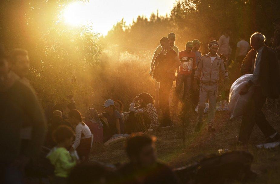 Migrantai Turkijoje prie sienos su Bulgarija