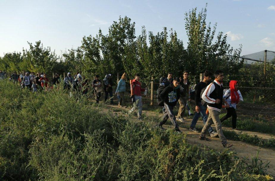 Migrantai pajudėjo link Kroatijos