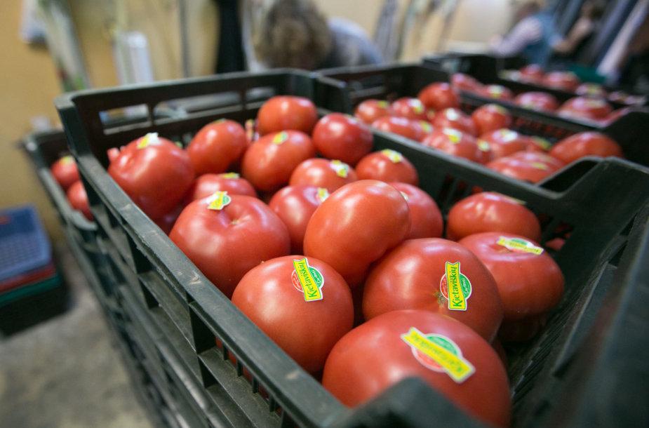 Kietaviškių daržovių šiltnamiai