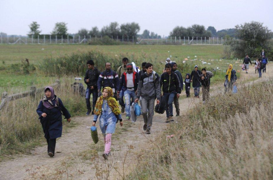 Migrantai prie Vengrijos sienos