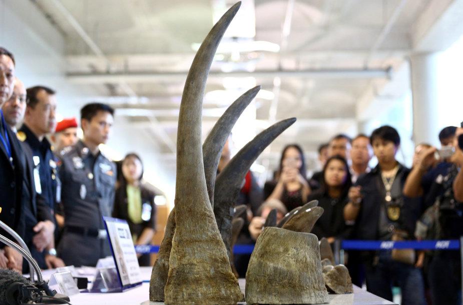 Tailande konfiskuotas 21 raganosio ragas