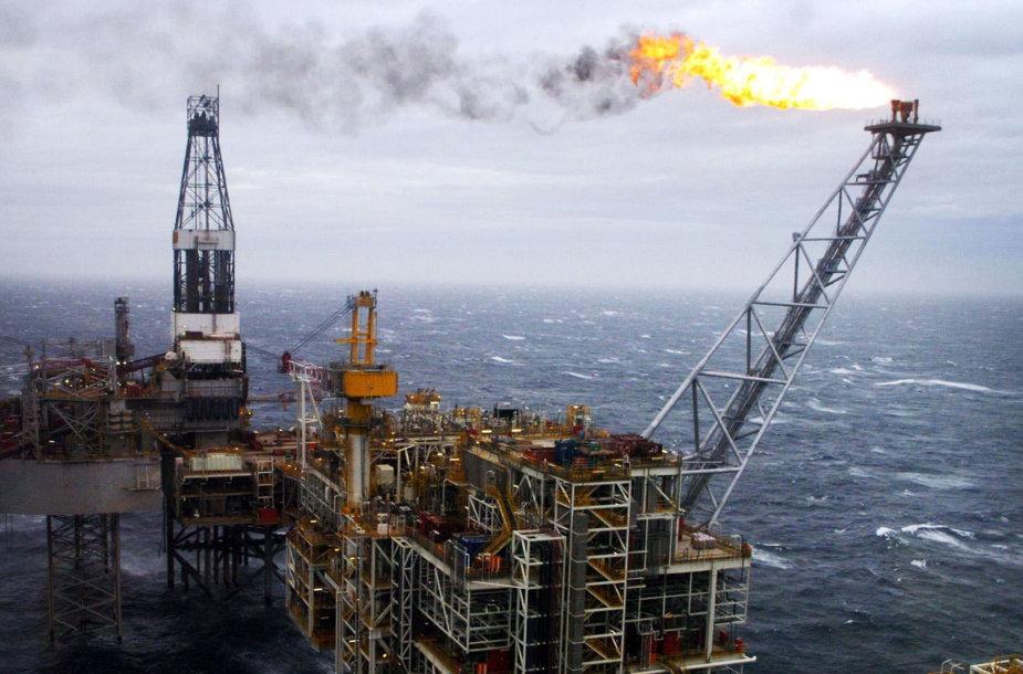 Naftos gavybos platforma jūroje