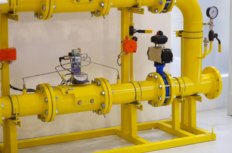 Dujotiekio sistemos dalis