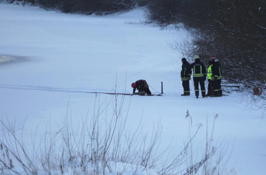 Ugniagesiai gelbėjo ant ledo aptiktą stirną.