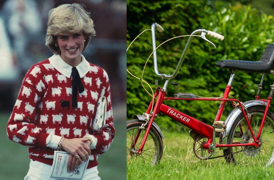 Princesė Diana, princesės Dianos dviratis