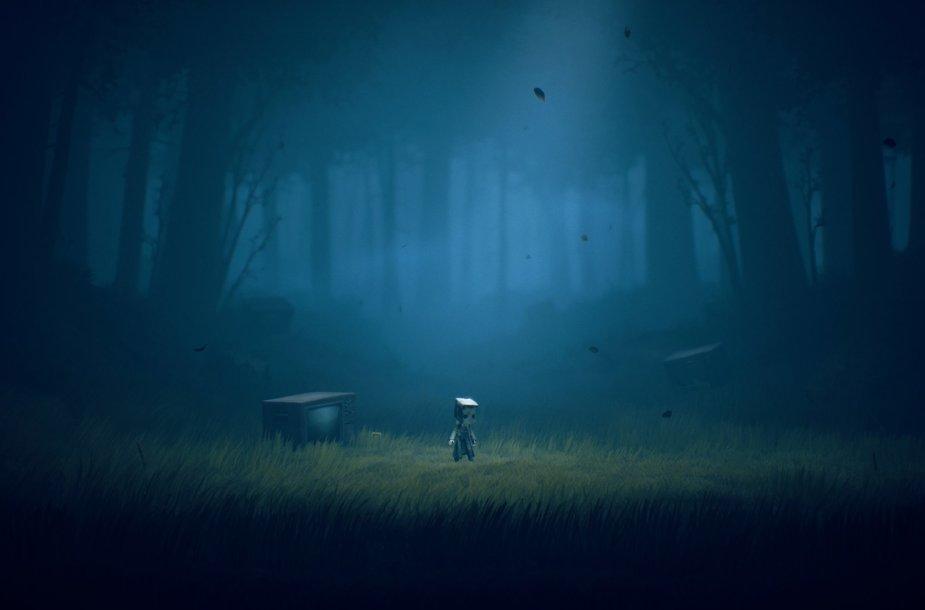 Žaidimas prasideda paprastai, bet intriguojančiai – vidury miško šalia neveikiančio televizoriaus. Kodėl?..