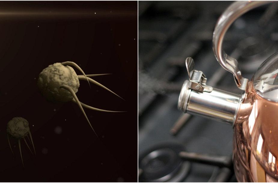 Fesibuke siūloma koronavirusą gydyti karštu vandeniu