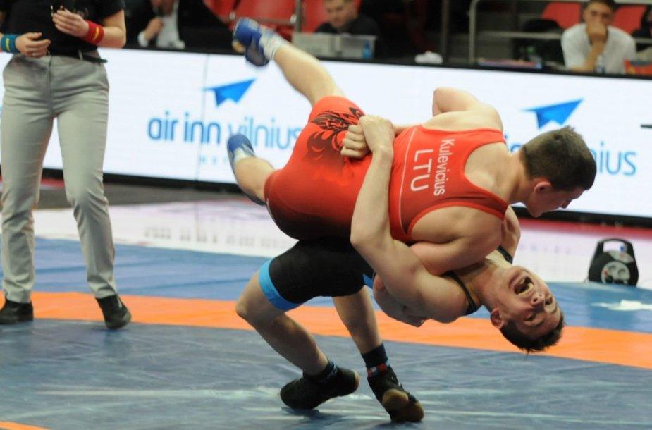 Imtynių turnyro Vilniuje akimirka.