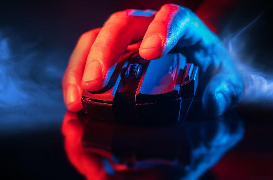 Kompiuterio pelė