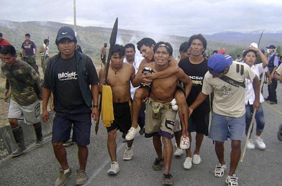 Indėnai neša sužeistą draugą.
