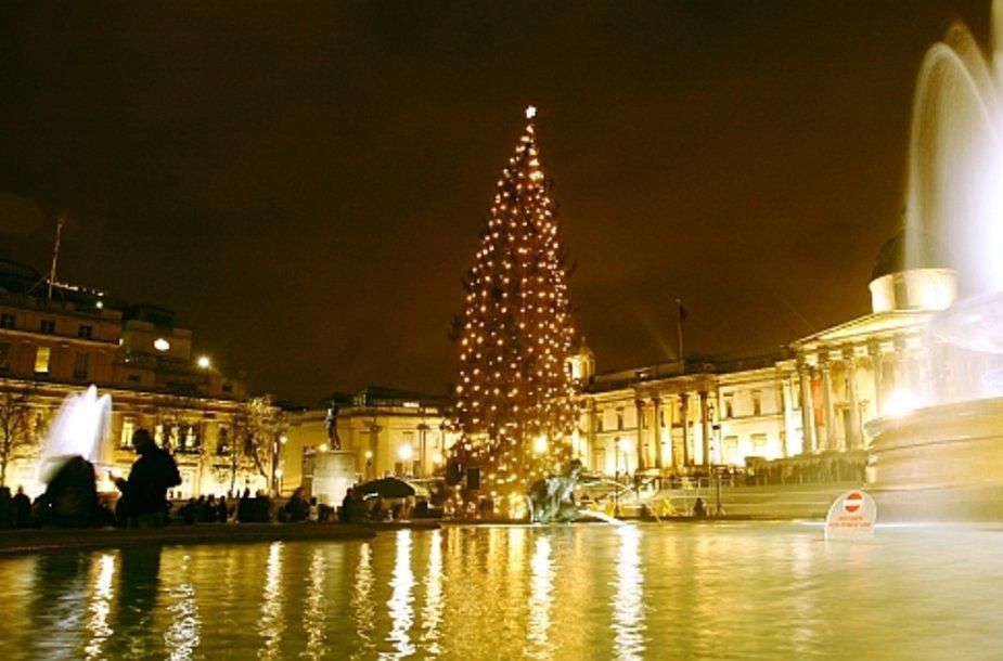 Kalėdų eglutė Londone, Trafalgaro aikštėje