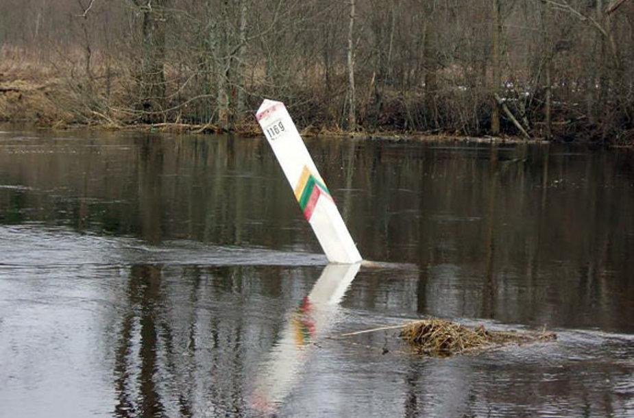 Potvynis pasienyje