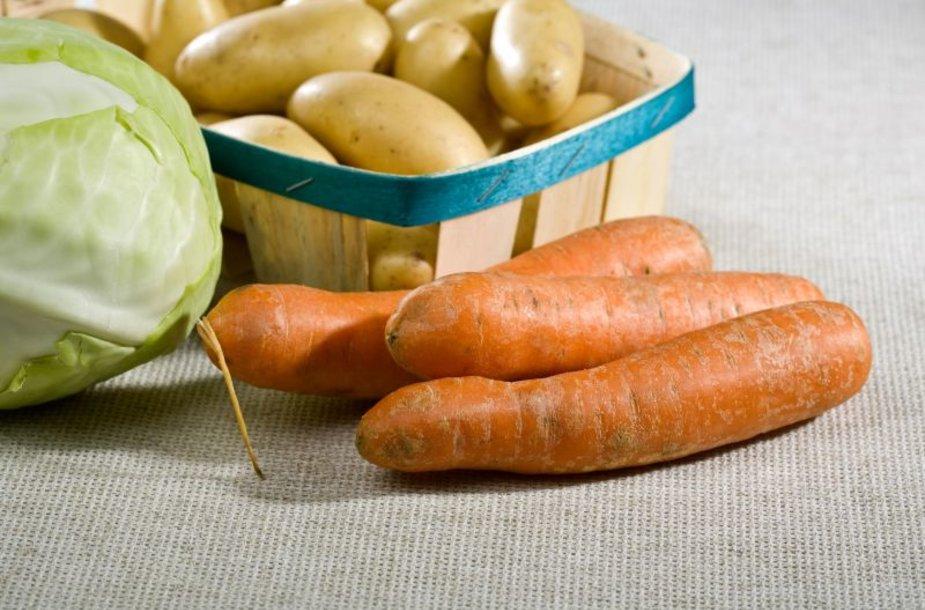 Daugelis daržovių mėgsta, kad jų saugojimo vieta būtų sausa ir vėsi.