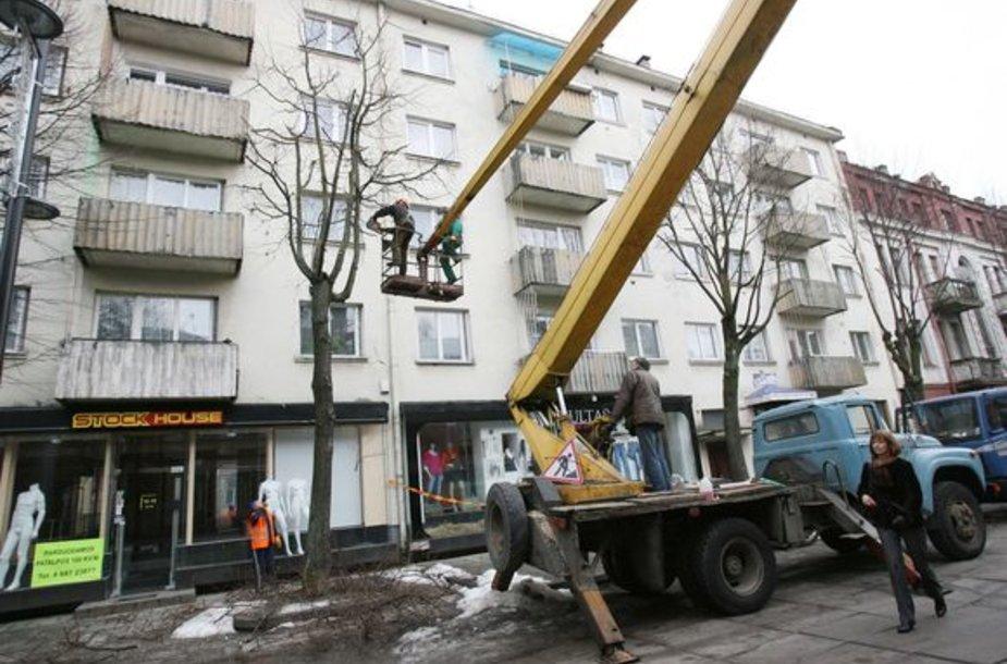 Miesto politikai stebėjosi, jog už kai kurių medžių nukirtimą savivaldybė priversta mokėti net iki 1,5 tūkst. Lt.