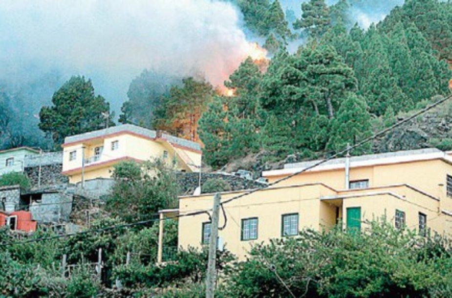 Miškų gaisrams apėmus La Palmos gyvenvietes apie 4 tūkst. žmonių buvo evakuoti iš namų bei viešbučių, bet lietuvių tarp jų nėra.