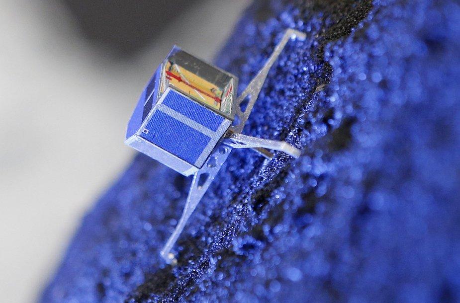 "Palydovo ""Rosetta"" modelis"