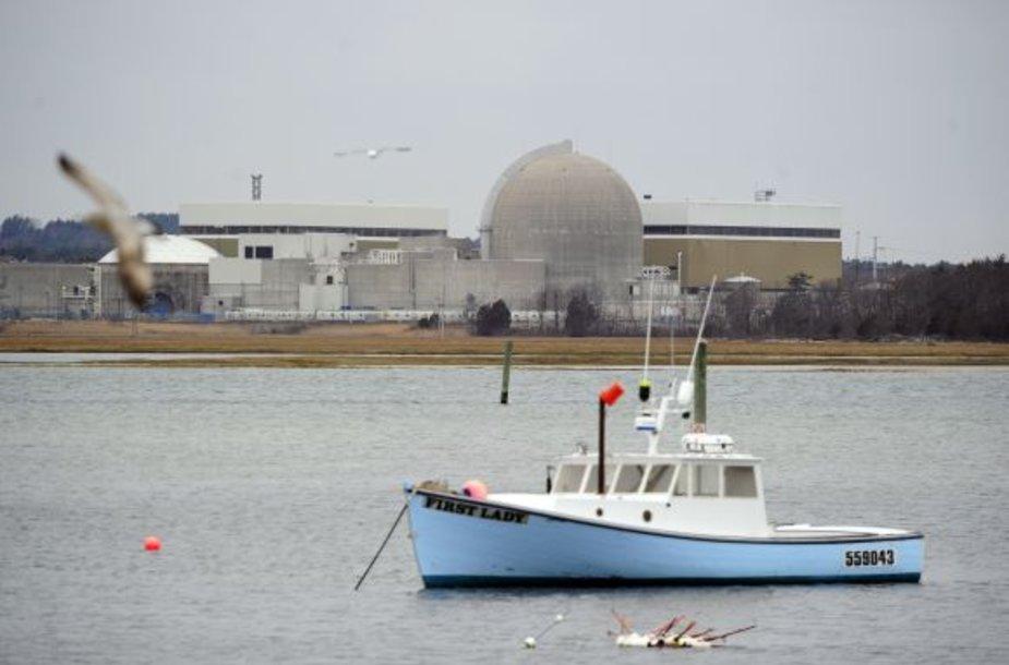 Sibruko atominė elektrinė (JAV)
