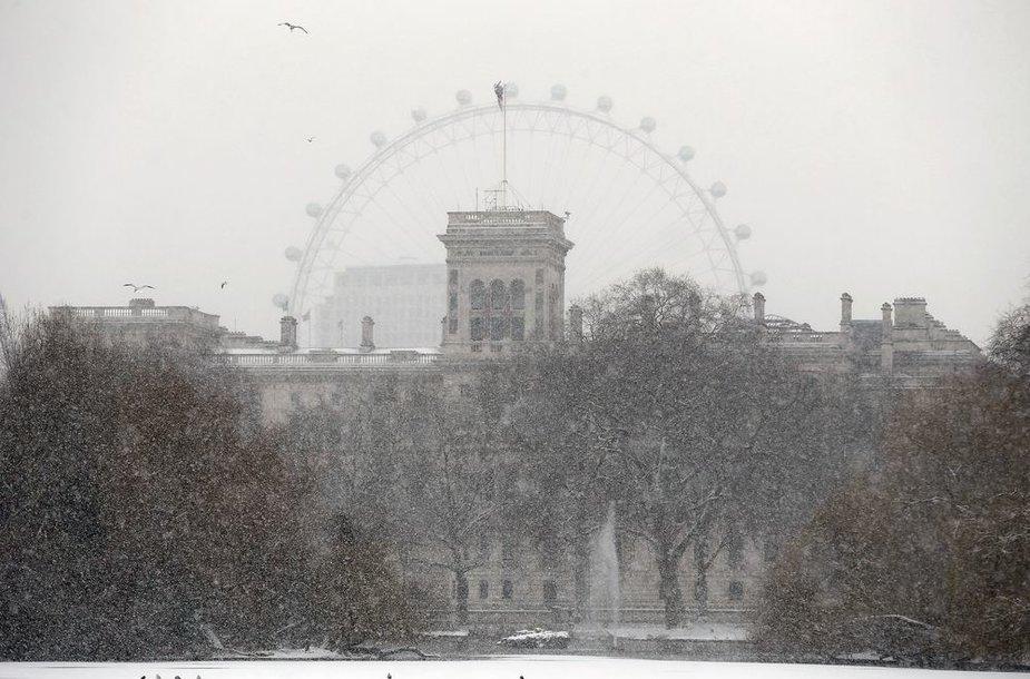 Londone sninga.