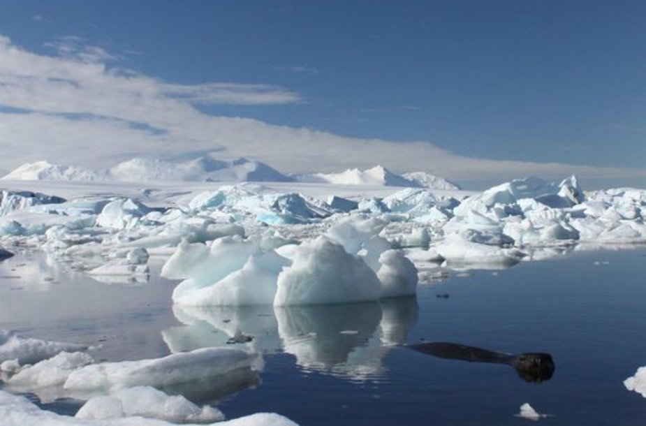 Ledkalniai