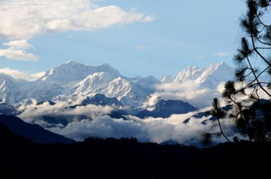 Kančendžangos kalnas