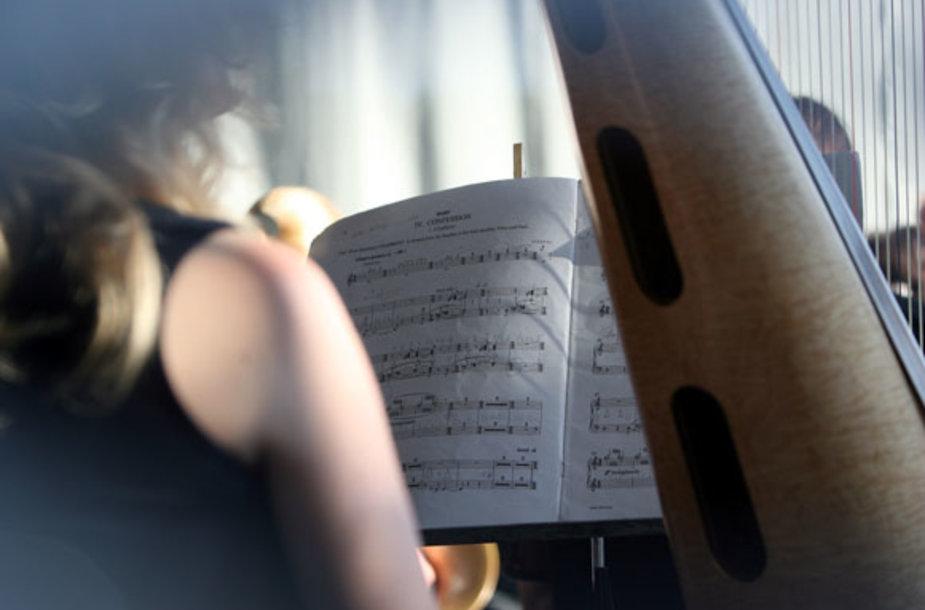 Muzikantai.