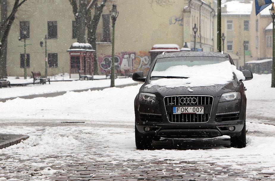 Žiema nesitraukia iš Lietuvos