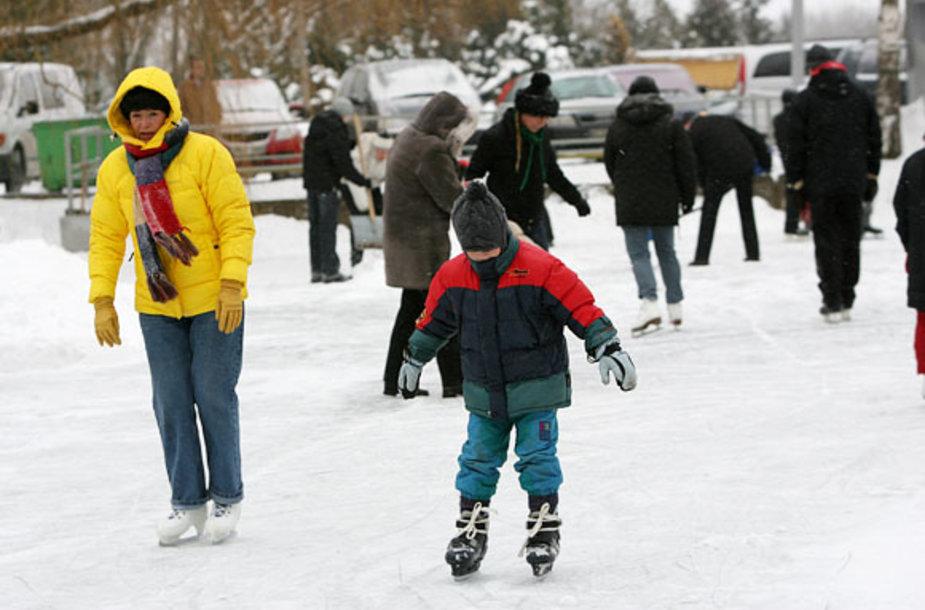 Žiemos šventė VDU Kauno botanikos sode