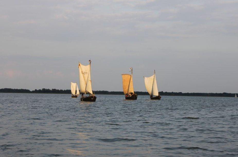 Kurėnai Kuršių mariose pakeliui iš Drevernos į Juodkrantę 2009 m.