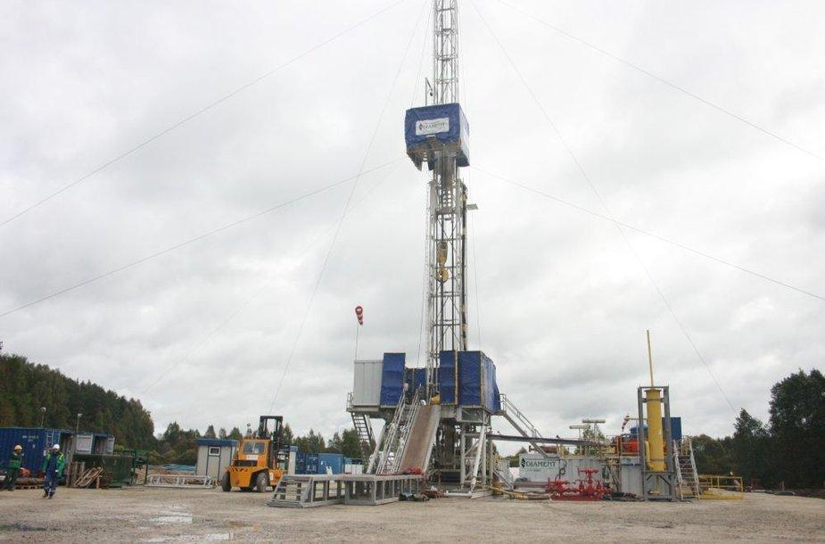 Syderiuose pirmadienį oficialiai pradėti gręžimo darbai, po kurių paaiškės, ar ši vieta tinkama milžiniškai suskystintų gamtinių dujų saugyklai po žeme įrengti.